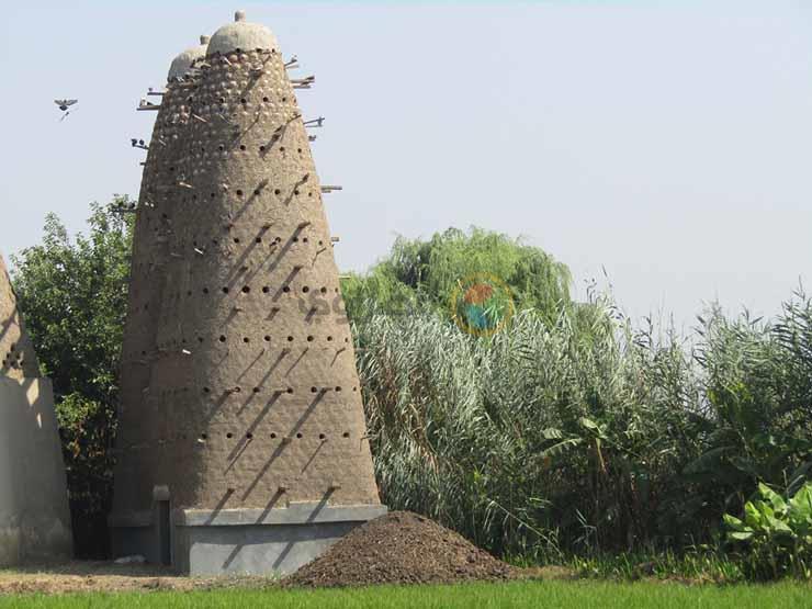 ابراج الحمام (الغيه) التربية فى الأبراج