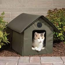 منازل القطط الصغيرة