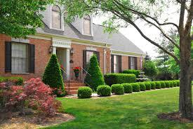 افضل شجره تزرع امام المنزل