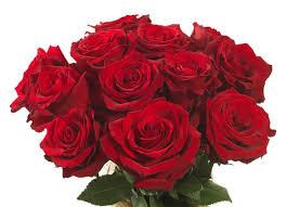صور باقات الورد