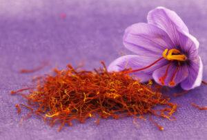 كيفية زراعة الزعفران