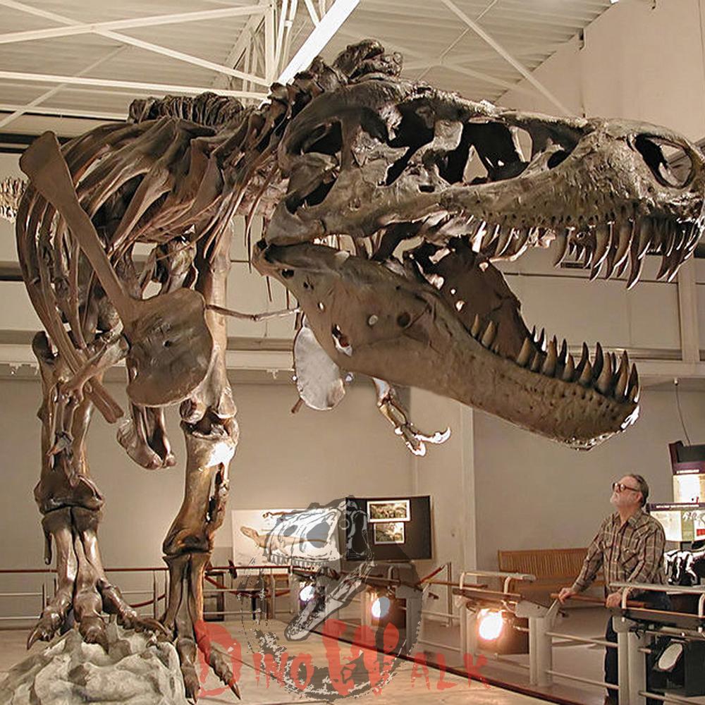 حفريات الديناصورات