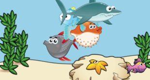 الكائنات البحرية للاطفال