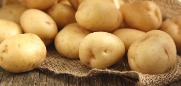 البطاطس وأهم فوائدها وأضرارها