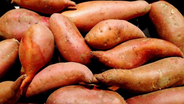 البطاطا وأهم فوائدها